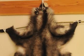 カモシカ毛皮